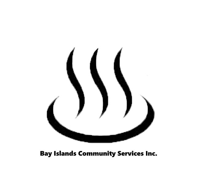 Logo BICS Inc